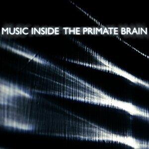 Music Inside 歌手頭像