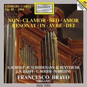Francesco Bravo Organo 歌手頭像