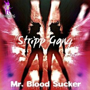 Mr. Blood Sucker 歌手頭像