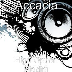 Accacia 歌手頭像
