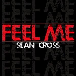 Sean Cross 歌手頭像