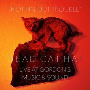 Dead Cat Hat 歌手頭像