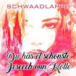 Schwaadlappe 歌手頭像