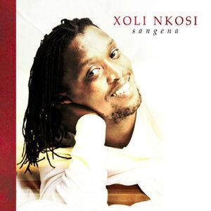 Xoli Nkosi 歌手頭像