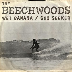 The Beechwoods 歌手頭像