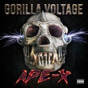 Gorilla Voltage 歌手頭像