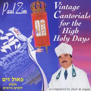 Paul Zim 歌手頭像