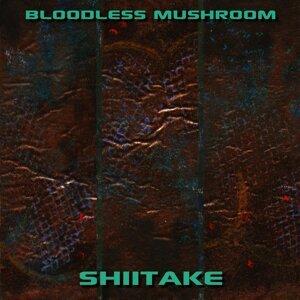 Bloodless Mushroom Artist photo