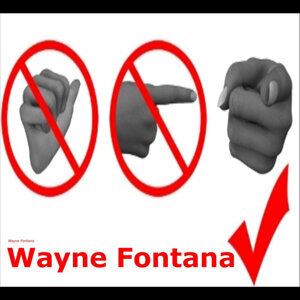 Wayne Fontana 歌手頭像