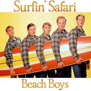 Beach Boys 歌手頭像
