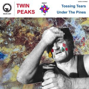 Twin Peaks 歌手頭像