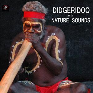 ディジュリドゥ 音霊 歌手頭像