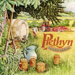 Plethyn
