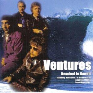 Ventures 歌手頭像
