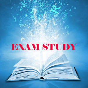 Exam Study New Age Piano Music Academy 歌手頭像