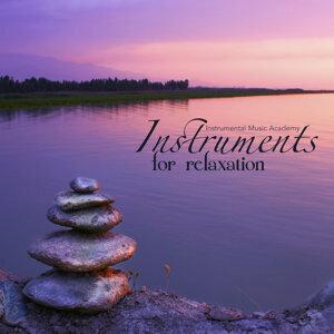 Instrumental Music Academy 歌手頭像