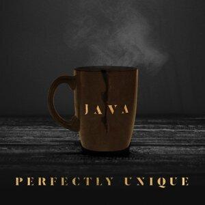 Java 歌手頭像