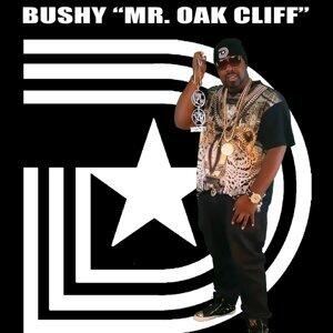 Bushy Mr Oak Cliff 歌手頭像