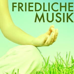 Achtsamkeit Meditationsmusik 歌手頭像