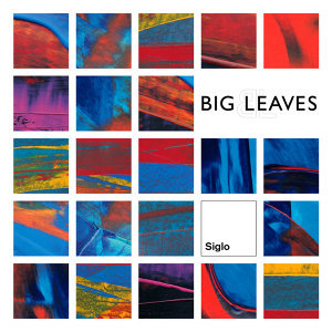 Big Leaves 歌手頭像