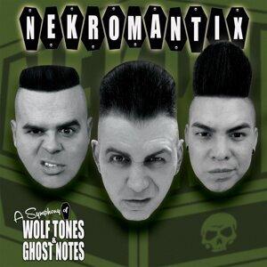Nekromantix 歌手頭像