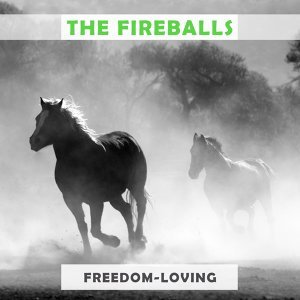 The Fireballs 歌手頭像
