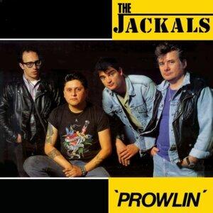 Jackals 歌手頭像