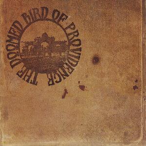 The Doomed Bird of Providence 歌手頭像