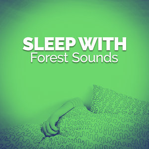 Sleep Songs with Nature Sounds 歌手頭像