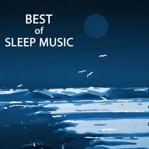 Sleep Music Lullabies for Deep Sleep 歌手頭像