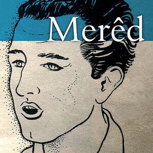 Meredydd Evans 歌手頭像