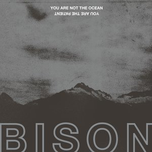 Bison 歌手頭像