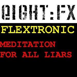 Flextronic 歌手頭像
