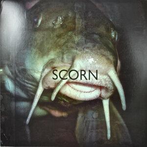 Scorn 歌手頭像
