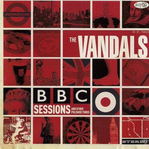 The Vandals 歌手頭像