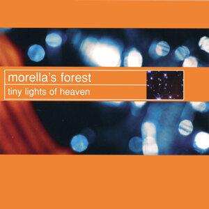Morella's Forest 歌手頭像
