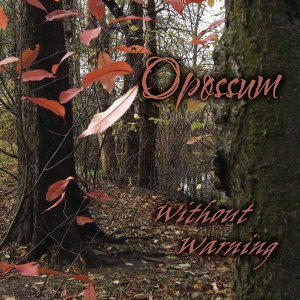Opossum 歌手頭像