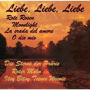Liebe, Liebe, Liebe 歌手頭像