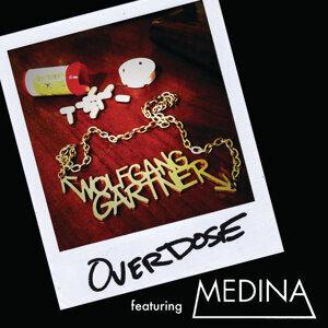 Wolfgang Gartner feat. Medina