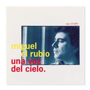 Miguel El Rubio 歌手頭像