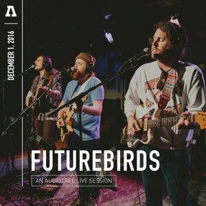 Futurebirds 歌手頭像