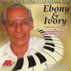 Palladam S. Venkataramana Rao 歌手頭像