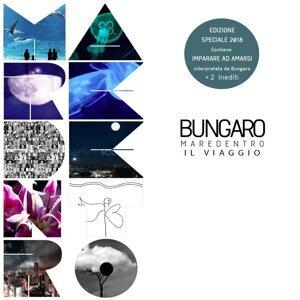 Bungaro