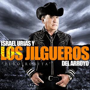 Israel Urias y Los Jilgueros Del Arroyo 歌手頭像