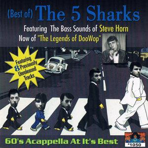 5 Sharks 歌手頭像