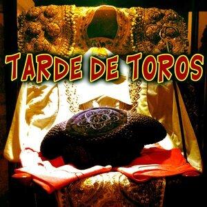Banda Taurina de las Ventas 歌手頭像