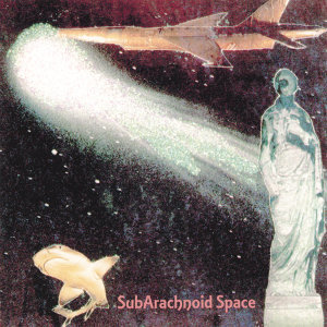 SubArachnoid Space 歌手頭像