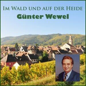 Gunter Wewel 歌手頭像