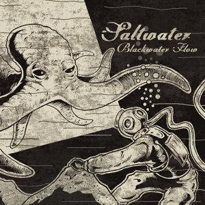 Saltwater 歌手頭像