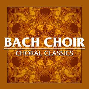 Bach Choir 歌手頭像